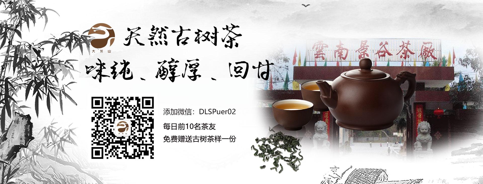 大龙山普洱茶